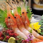 羽幌漁港 牡丹海老刺