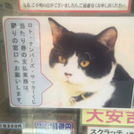 生鮮食品 ファスト長篠 - 高額当選の招き猫の福ちゃんが来てから高額当選が続出する宝くじ売り場の看板猫。