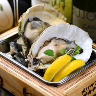 国内外から新鮮な生牡蠣を一年中入荷!平日限定!生牡蠣150円