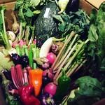 魚ダイニング Jin - 三浦の提携農家直送の新鮮野菜