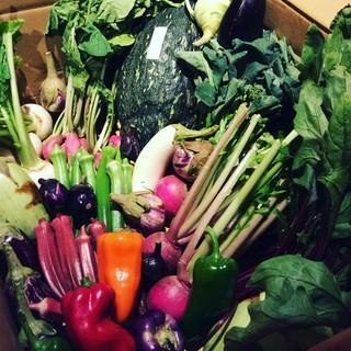 三浦の産直野菜!!温暖な気候が育むビタミン野菜♪