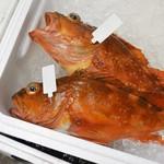 魚河岸割烹 鮮 -