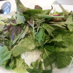 SUNDAY - SUNDAYグリーンサラダ