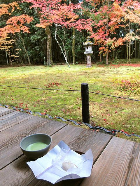 高桐院 - 抹茶は辻利のお薄茶(2016.11月)