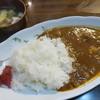 鳥仁 - 料理写真:特製辛口チキンカレー