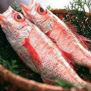 高級魚【のど黒】がいつでも食べれる!!!