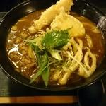 59601303 - 天ぷらカレーうどん(1100円)