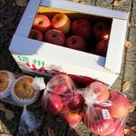 59623823 - 今回、おぶせ物語で購入したリンゴ