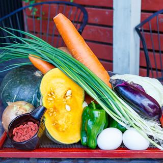 基本のお野菜