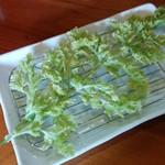 59645190 - 野菜定食①ニンジンの葉