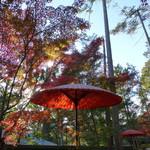 59709600 - 茶席の傘