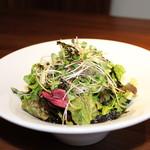 焼肉ダイニング GYUBEI - GYUBEIの塩チョレギサラダ GYUBEI定番の生野菜たっぷりのサラダです。韓国風ピリ辛ドレッシングでお召し上がりいただきます。