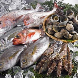 直送鮮魚「お好きに鮮魚を選んで一人前ずつ召しあがれます」