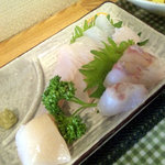 食事処さとう - 刺身(マツカワカレイ・クロソイ・ホタテ)