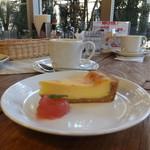 カフェ こっとーね - チーズケーキ