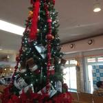 59888967 - 待合室のツリー