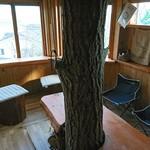 たぶの木 -