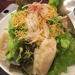 59920025 - バリバリ皿うどんと彩り野菜のサラダ
