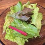 カレー クローバー - サラダ