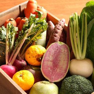 新鮮野菜をご提供