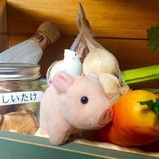 じっくり煮込んだ動物スープと野菜
