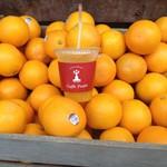 60168673 - オレンジジュース(搾りたて)レギュラー(450円)