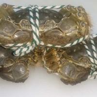 上海小吃 - 調理前の上海蟹。イキがいいです