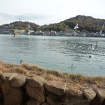 魚信旅館 - 窓を開けると目の前は、すぐ海なんです!