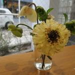 60244379 - 季節の花がテーブルに
