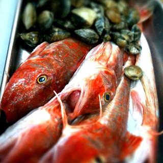 【築地直送】新鮮なお魚を使用しております。