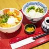 Oosakanannariudon - 料理写真:かしわ天玉丼 小うどん付