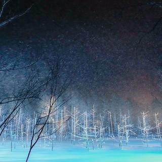 【冬季限定】青い池ライトアップの帰りにも♪