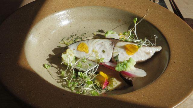 セイズファーム - 氷見産鮮魚のコンフィ