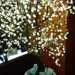 60452283 - お店には中華風クリスマスツリーが飾られてました。