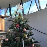 ハウス オブ フレーバーズ - 店内にはクリスマスツリーが飾られていました