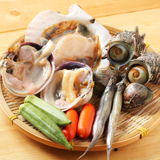 毎日入荷新鮮魚介