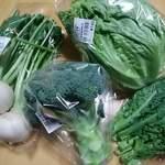 道の駅 保田小学校 - 料理写真:野菜いろいろ