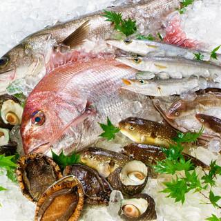 瀬戸内海の地魚を食べるならすし水軍へ