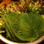 韓国家庭料理 天 - レタスとゴマの葉