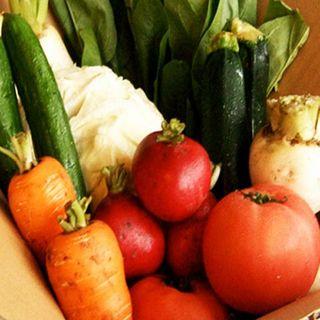 【野菜は国産!お米はコシヒカリ♪安心な食材を使用^^】