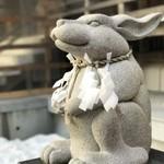 60599859 - 撫でウサギ
