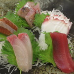 和食処 八田 - カンパチ、赤身、サーモン、タコ、アジの刺身盛合せアップ