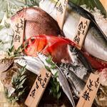 本日の日替わり鮮魚
