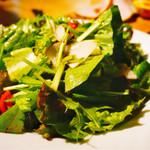 クラフトビアハウスモルト - 京都大山崎 小泉さんの農園サラダ