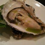 60687102 - 生牡蛎オリーブオイルがかかってます。