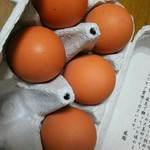 大江ノ郷自然牧場 ココガーデン -
