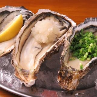 厳選された新鮮な牡蠣
