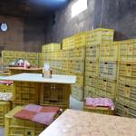 ラーメン倉庫 - 2013年4月
