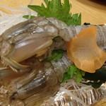 瀬戸内海鮮料理 白壁 - 生しゃこ刺身