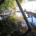 60916121 - 湖畔の露天風呂1